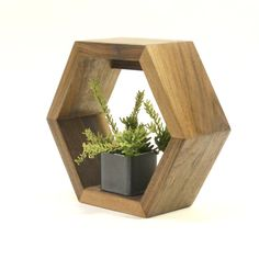 WALL PLANTER by designaltersolutions on Etsy