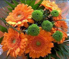 All Newest - Pixdaus   Orange gerbera bouquet By: sopiy