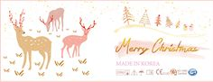 Beaut Contact Lens- Christmas Theme of Packaging Design. Christmas Makes, Merry Christmas, Contact Lens, Christmas Themes, Adobe Illustrator, Packaging Design, Label, Graphic Design, Illustration