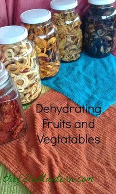 dehydrating fruits and vegies