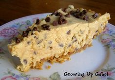Peanut Butter Chocolate Chip Pie would be great chilled on a warm summer evening! ~ Growing Up Gabel @Shelly Gabel