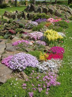 Stepping Stones, Gardening, Rock, Outdoor Decor, Flowers, Plants, Rockery Garden, Stone, Garten