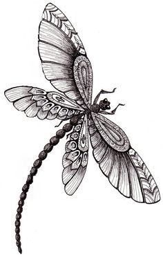 Possible tattoo- dragonfly style