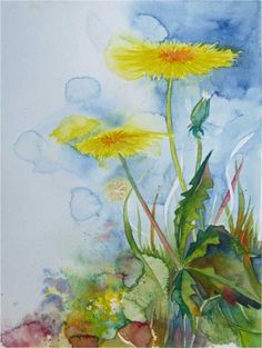 The yellow of the dandelion (c) watercolor by Frank Koebsch, 30 x 40 cm, if you feel interested in how the picture is created, use this link http://frankkoebsch.wordpress.com/2012/05/30/das-gelb-des-lowenzahns-aquarell-von-frank-koebsch/