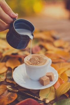 Hot Drink for a Cool Day