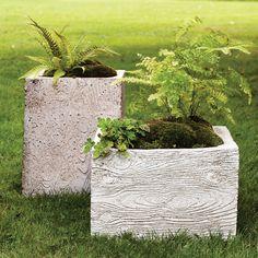 Faux-bois planters provide a home for ferns and moss, both woodland natives. The rectangular vessels -- one wide, the other tall -- get their pattern from rubber mats placed inside the reusable wooden molds.