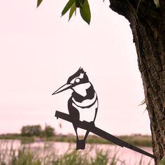 silhouet ijsvogel metalbird.nl