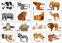 Wild+Animal+Flash+Cards+Printable The Effective Pictures We Offer You About Cute animals fox A quality picture can tell you many things. Printable Animal Pictures, Animal Pictures For Kids, Wild Animals Pictures, Printable Animals, Printable Cards, Printable Templates, Free Printable, The Zoo, Safari Animals