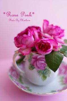 *Rose Rose*