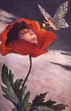 "silenceforthesoul: "" ♥ Unknown Artist - Fairy Hovering around Woman Sleeping in Poppy Flower "" Pretty Art, Cute Art, Arte Indie, Illustration Art, Illustrations, Arte Obscura, Arte Sketchbook, Fairytale Art, Hippie Art"