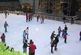 ice skating at Rocke