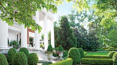 The Plants - Rome is Where the Heart Is - Southern Living - They used boxwoods for low hedges and anchoring corners, dwarf mondo grass for edging the walks, Japanese cryptomerias to screen the solarium, Southern magnolias along the property lines for privacy, and flowers for seasonal color.