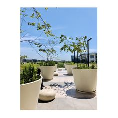 Innovators in all weather, light weight polyconcrete Trough Planters, Large Planters, Planter Pots, Outdoor Landscaping, Outdoor Decor, Mini Gardens, Higher Design, Rooftops, Shade Garden