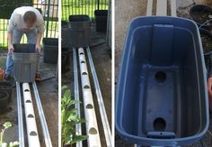 Building and Installing a self watering vegetable garden system Tomato Garden, Vegetable Garden, Water Garden, Garden Plants, Watering Tomatoes, Self Watering, Outdoor Living, Outdoor Decor, Homemaking