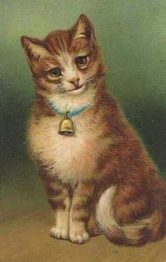 cat with collar and bell