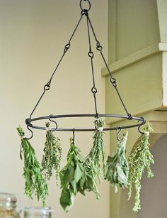 Herb Drying Rack. Decorative and functional, this steel rack dries six bunches of garden herbs. Extra hooks available.