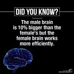 Male Brain Is Bigger Than The Female's True Interesting Facts, Some Amazing Facts, Interesting Facts About World, Intresting Facts, Unbelievable Facts, Amazing Science Facts, Wow Facts, Real Facts, True Facts