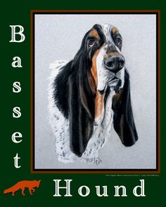 Basset Hound  Glass Cutting  Board 12x 15 by TheCopperMare on Etsy