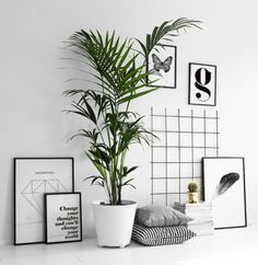 We are big fans of leaning posters and framed art against the wall, it is a low commitment way to add a variety of prints to your space and so easy to change! These graphic prints look great with the mesh backdrop and some textiles to soften. #homedecoraccessories