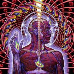 Tool album art by Alex grey Alex Grey, Alex Gray Art, Tantra, Psychedelic Art, Cover Art, Cd Cover, Tool Artwork, Art Visionnaire, Tool Band