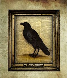 Raven $10.00, via Etsy. So Poe-ish.