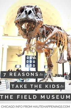 Planning to visit Chicago with kids? Then read this post! 7 reasons why kids love the Field Museum (and how to visit for free)!