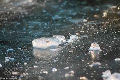 Frozen by DuncanImagery #nature #mothernature #travel #traveling #vacation #visiting #trip #holiday #tourism #tourist #photooftheday #amazing #picoftheday