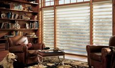 Pirouette Shades - Hunter Douglas - Premier Window Coverings