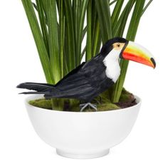 Feathered Toucan from Z Gallerie