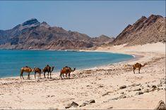 Le spiagge bianche di SALALAH- Oman del SUD