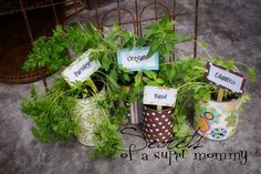 Secrets of a Super Mommy: Earth Day Herb Garden