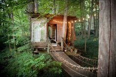 Prepare to fall in love with America's most charming treehouse!