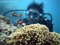 Scuba diving in the Andaman and Nicobar Islands - A Cruising Couple