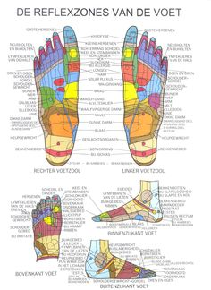 Reflexzonetherapie, reflexologie, voetreflex