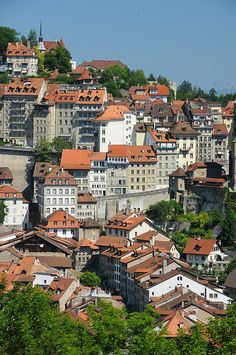 Old town Fribourg, Switzerland Copyright: Christian Girault