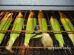 RAMBLINGS FROM A DESERT GARDEN....: Sweet Corn Harvest and Super Easy Way to Cook It