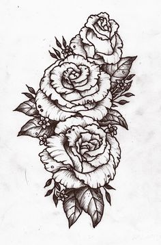 different rose designs, but good layout