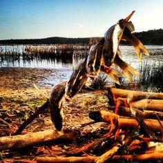 Enjoy a Fish Braai in Kosi Bay!