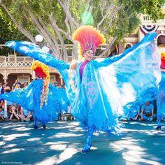 Let's dance  #디즈니랜드 #퍼레이드  #여행스타그램 #여행사진 #미국여행 #travelphotography #instatravel #travelgram #instaphoto #disneyland #parade #travel #usa #california by mangsangk