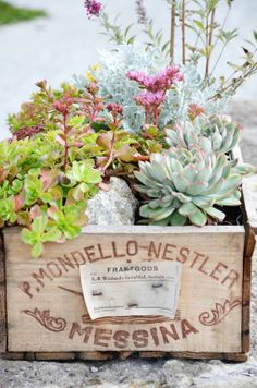 Plant some wine box deck gardens