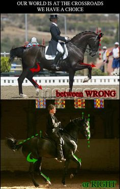 Figure 1. Incorrect passage performed by international rider Anky van Grunsven. Showing poor hindlegs engagement and back elevation. Notice the lack of parallel movement.  Figure 2. Correct piaffe performed by Alexander Nevzorov. Picture by Linda Nevzorov. Showing correct hindleg engagement. Horse is lifting it's back and forhand up.
