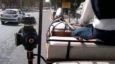 Paseo en carro de caballos por Sevilla