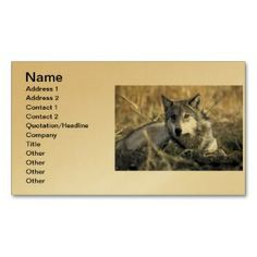 Gray Wolf - Timber Wolf - Red Wolf Series Business Card printed on a gold colored background.  Other colors available.