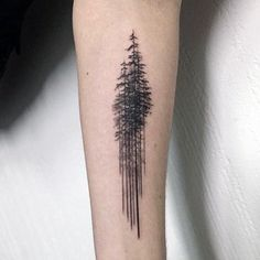 Pine tree나무들 more tree tattoo meaning, tree tattoo men, pine tattoo Pine Tattoo, Schallwelle Tattoo, Tattoo Life, Tree Tattoo Arm, Inner Forearm Tattoo, Forearm Tattoo Design, Body Art Tattoos, Sleeve Tattoos, Tree Tattoos