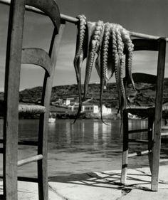 "kvetchlandia: ""Herbert List Octopus, Ionian island of Corfu, Greece 1938 """