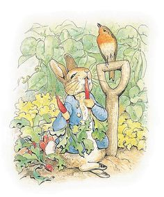 One of my favorite children's book of all time. 'Peter Rabbit' by Beatrix Potter.