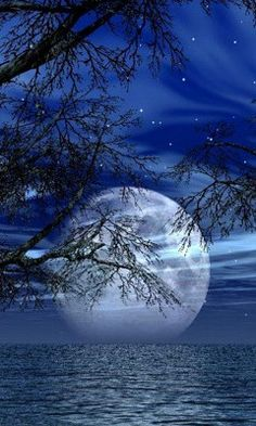 Moon is so pretty behind tree limbs, with water and sky!! Love the night sky!!