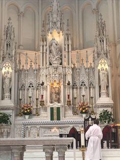 Cathedral Basilica of the Immaculate Conception Old Catholic Church, Catholic Art, Roman Catholic, Religious Art, Catholic Churches, Sacred Architecture, Cathedral Architecture, Cathedral Basilica, Cathedral Church