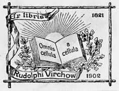 """""""Omnis cellula e cellula""""  Rudolf Virchow , meaning """"all cells come from cells"""". Also all cells of your body. Every cell is born of a previous cell, which was born of a previous cell. Life comes from life. Life begets life begets life begets life begets life..."""