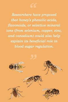 A high-sugar food that actually benefits diabetics? It might sound surprising, but this is what the science bears out when it comes to honey! #honey #naturalsweetener #functionalfood #bloodsugarregulation Ayurvedic Practitioner, Paleo Mom, Sugar Free Diet, High Sugar, Lower Blood Sugar, Natural Honey, Sweet
